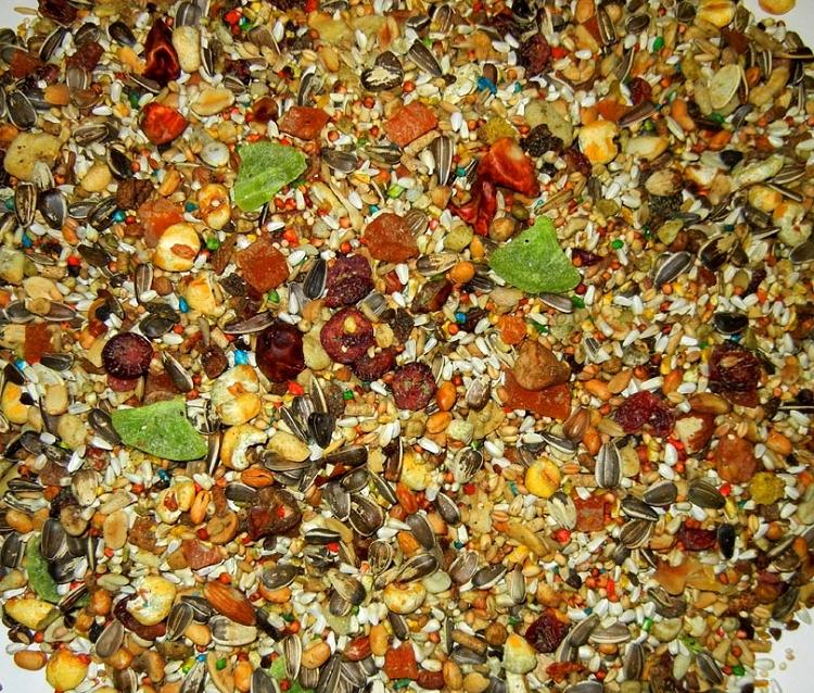 Abba 1400 African Grey Senegal Food 5lb