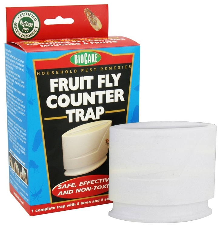 Kitchen Fruit Fly Traps