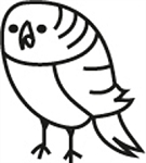 Window Decal - Parakeet