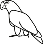 Window Decal - Pionus