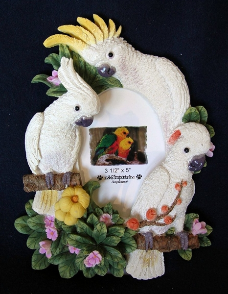 Cockatoo Picture Frame