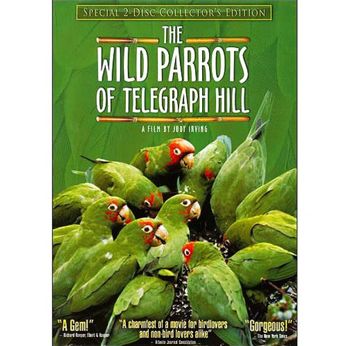 Wild Parrots of Telegraph Hill Two-Disc Collector's Edition