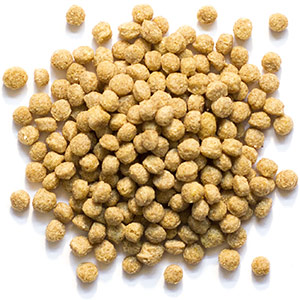 Natural Pellets By Zupreem Review
