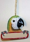 Ornament - Macaw