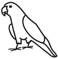 Window Decal - Conure