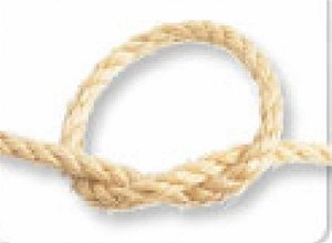 "Natural Sisal Rope, 1/4"" (10 feet)"