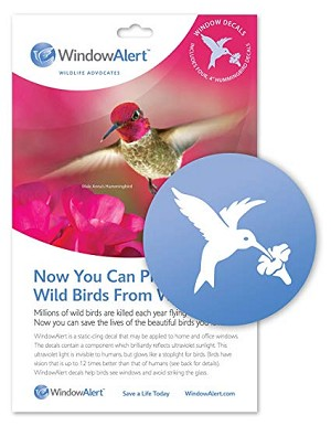 Window Alert (set of 4) - Hummingbirds